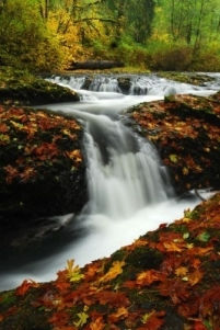 Photo by Great Oregon Vacations