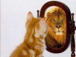 cat and lion in mirror