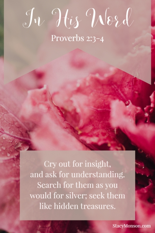 Cry out for insight, and ask for understanding. Search for them as you would for silver; seek them like hidden treasures. Proverbs 2:3-4