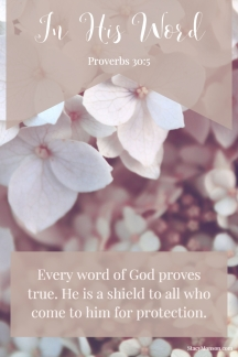 Every word of God proves true. He is a shield to all who come to him for protection. Proverbs 30:5
