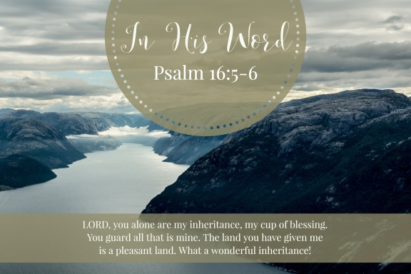 LORD, you alone are my inheritance, my cup of blessing. You guard all that is mine. The land you have given me is a pleasant land. What a wonderful inheritance!