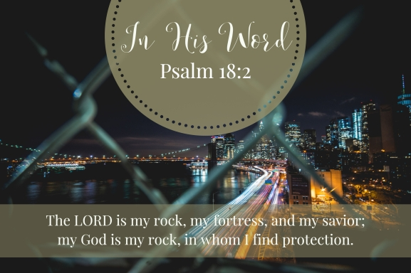 The LORD is my rock, my fortress, and my savior; my God is my rock, in whom I find protection.