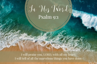 I will praise you, LORD, with all my heart; I will tell of all the marvelous things you have done.