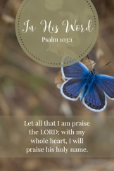 Let all that I am praise the LORD; with my whole heart, I will praise his holy name.