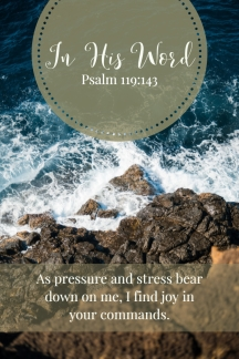 As pressure and stress bear down on me, I find joy in your commands.