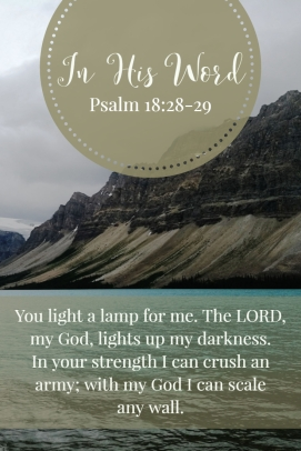 You light a lamp for me. The LORD, my God, lights up my darkness. In your strength I can crush an army; with my God I can scale any wall.