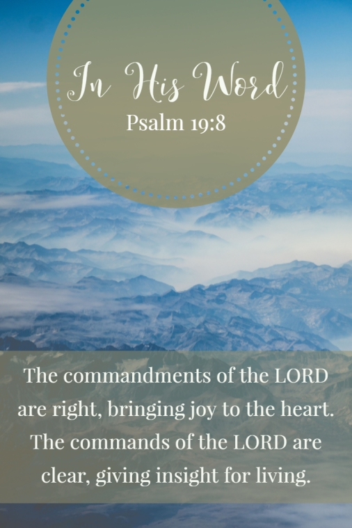 The commandments of the LORD are right, bringing joy to the heart. The commands of the LORD are clear, giving insight for living.