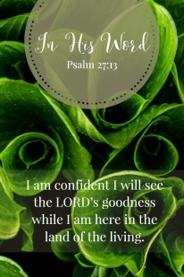 I am confident I will see the LORD's goodness while I am here in the land of the living.