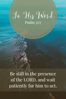Be still in the presence of the LORD, and wait patiently for him to act.