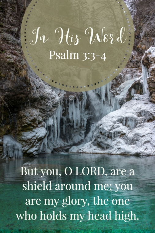 But you, O LORD, are a shield around me; you are my glory, the one who holds my head high.