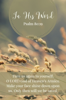 Turn us again to yourself, O LORD God of Heaven's Armies. Make your face shine down upon us. Only then will we be saved.
